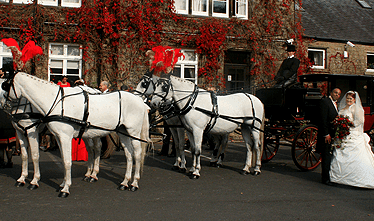 an image showing a horse drawn and carriage outside Ferraris Country House Hotel with a happy married bride and groom